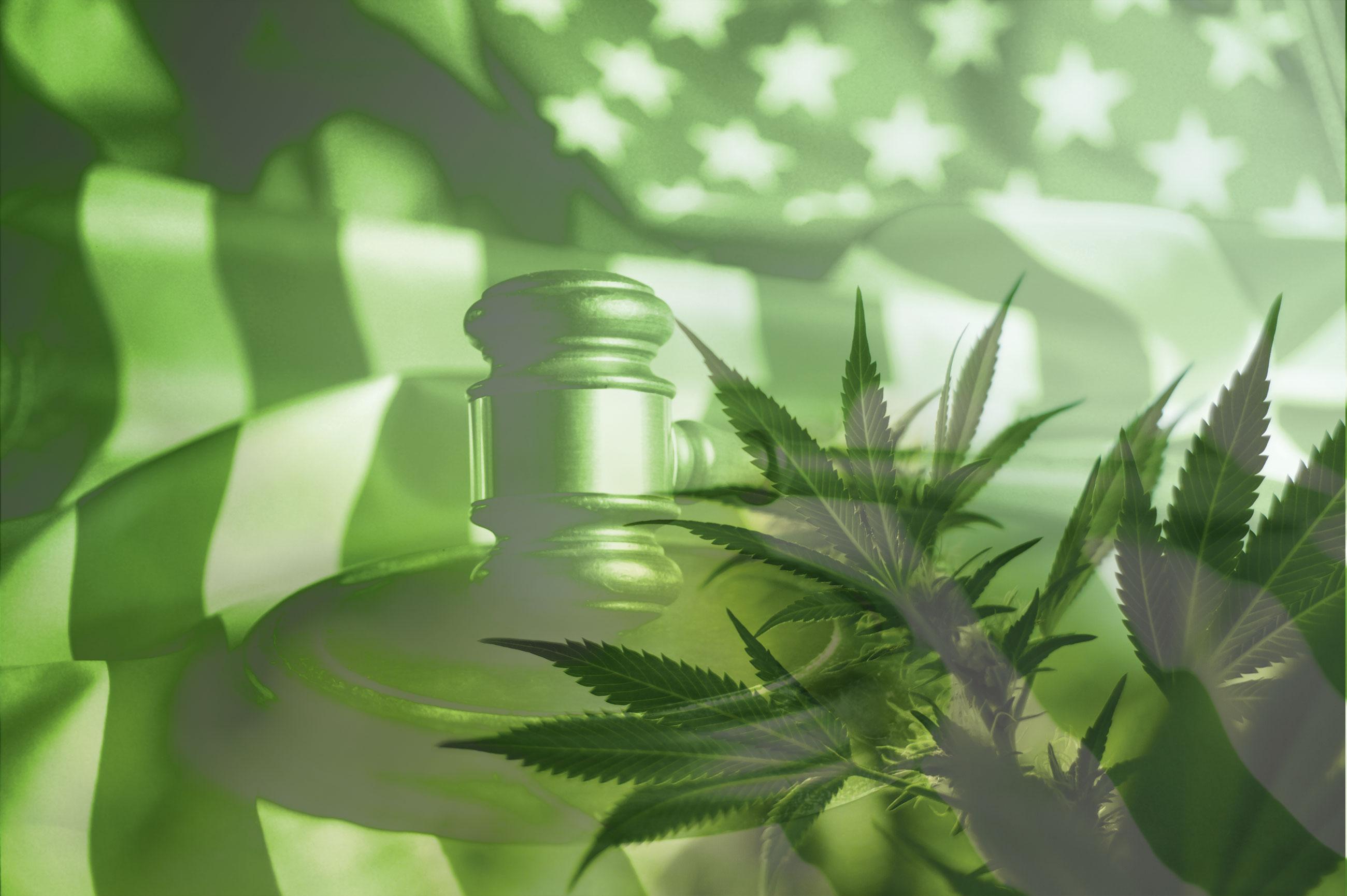 Federal Cannabis Reform Looms … Again