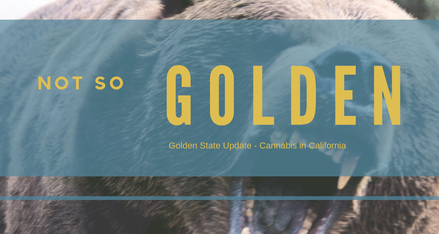 Golden State Update – Cannabis in California